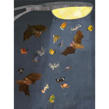 Bat Breakfast