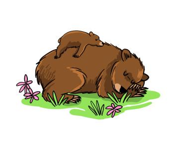 Mom and baby bear