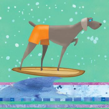 Surf Hound 2