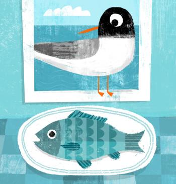 Black headed Gull and Fish