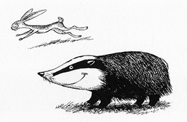 Hare and badger.