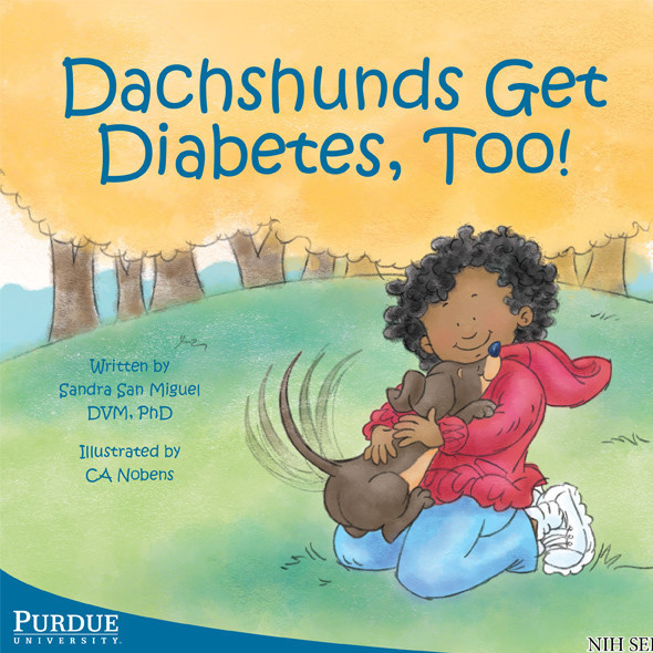 Dachshunds Ge Diabetes Too Cover
