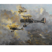 SAE aircraft over the Somme